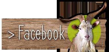 Facebook La Boisette